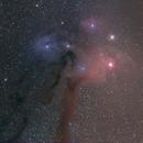 Rho Ophiuchi cloud complex,                                Steven Bellavia