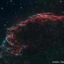 Veil Nebula - C33,                                Justin Daniel