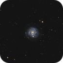 NGC3344 - An Isolated Ringed Spiral,                                Jason Guenzel
