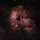 IC410: The Tadpoles Nebula (2019),                                Daniel Tackley