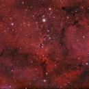 Ic1396 -  The Elephant's Trunk Nebula,                                allcolorsarebeautiful