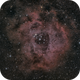 Rosette nebula,                                Joe Beyer