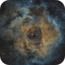 NGC 2237 Rosette Nebula SHO,                                MassimoTuninetti