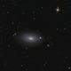 M63 sunflower galaxy,                                antares47110815