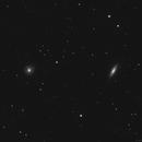 NGC 4036 & NGC 4041,                                Gary Imm