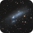 NGC 2366 Barred Irregular Dwarf Galaxy,                                Jerry Macon