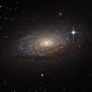 Messier 63 (The Sunflower Galaxy),                                Alex Roberts