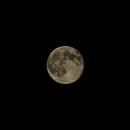 summer moon,                                gabi bruno