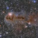 LDN 1247 - The Angler fish nebula,                                Rafael Schmall