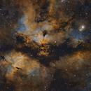 IC1318 - Gamma Cygni Nebula,                                MartinF