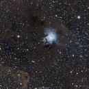 NGC-7023 Iris Nebula,                                Astrobot