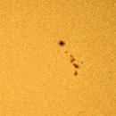 Sunspot Region 2781,                                David Redwine