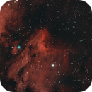 IC 5070, The Pelican Nebula,                                Bob Rucker