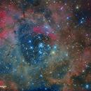 NGC2239 - Nebulosa de la Roseta,                                José Fco. del Aguila (daguila)