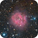Cocoon Nebula,                                xordi