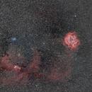 Rosette Nebula, Christmas tree cluster and Cone Nebula,                                Cyril NOGER