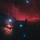 IC 434,                                Gary Imm