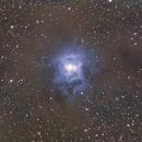 Iris Nebula,                                Zac Dawson