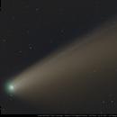 Comet NEOWISE C 2020,                                Michael Feigenbaum