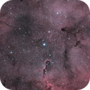 IC1396 - Elephant Trunk Nebula,                                Cédric Grisvard
