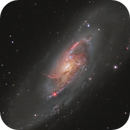 The Whirling Heart of M 106,                                pete_xl