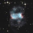 M 76 - Little dumbell - Un joli papillon,                                Jeffbax Velocicaptor