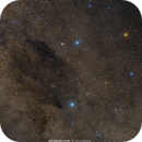 The Coalsack Nebula and Crux,                                Wellerson Lopes