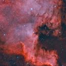 NGC 7000 North America nebula,                                Roy Hagen