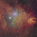 Cone nebula (NGC 2264)  in modified Hubble palette,                                Matt McBee