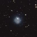 NGC 5474 - Peculiar Dwarf Galaxy,                                Will Czaja