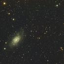 NGC2403,                                Ray Heinle