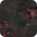 Cygnus Area Wide Field,                                Aram Grigoryan