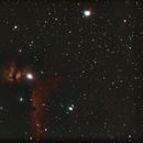 NGC 2024_Flammen-Nebel,                                Silkanni Forrer