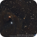 Hind´s Variable Nebula at the T60, Pic du Midi,                                apricot
