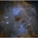 NGC1893 The Tadpoles,                                lambrechtssteven
