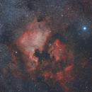 Nordamerikanebel (NGC 7000) und Pelikannebel (IC 5070),                                Michael Schröder