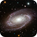 Messier 81- Bode's Galaxy,                                Matt Harbison
