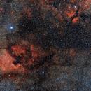 Cygnus area,                                D@vide