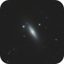 NGC 5866 - Spindle Galaxy,                                Andrew Burwell