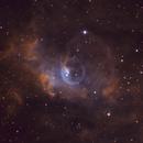 Bubble Nebula in Narrowband,                                Jim Morse
