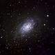 NGC 2403 - C7, Spiral Galaxy,                                David N Kidd
