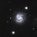 NGC 2415,                                Gary Imm
