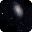 Four Nights of Comet 156/P with M33 mosaic/combo,                                Dan Bartlett