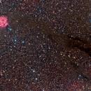 Cocoon Nebula,                                Leo Shatz