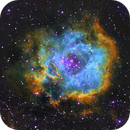The Rosette Nebula in the Hubble palette,                                Mostafa Metwally