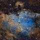 The Eagle Nebula and the Pillars of Creation (M16),                                Ara Jerahian