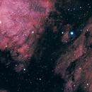 Pelican Nebula,                                Carsten Eckhardt