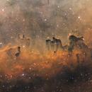 LDN 1102, a Cosmic Caravan in Cepheus,                                Jari Saukkonen