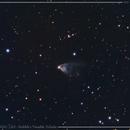 NGC 2261 - Hubble's Variable Nebula,                                PGU (Giuliano Pinazzi)