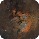 NGC 7822- CED214,                                Vlad
